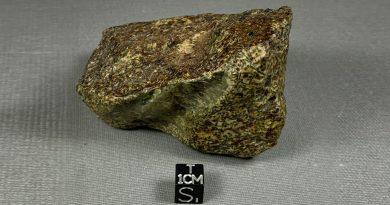 Une météorite plus vieille que la Terre découverte en Algérie